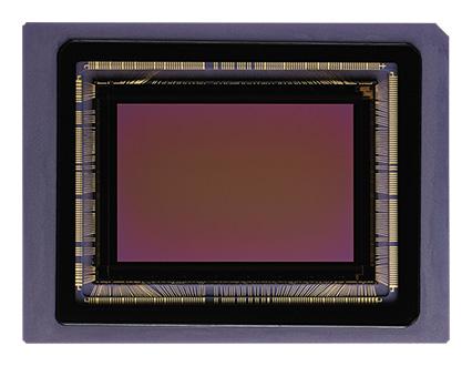 FOVEONセンサー画像
